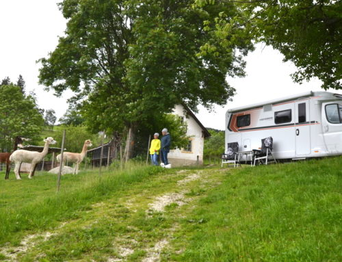 Camping-Urlaub am Biohof machen